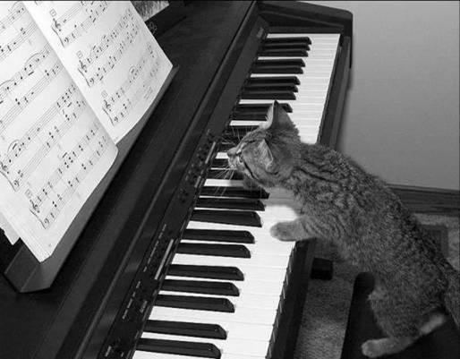 殷老师谈如何练钢琴